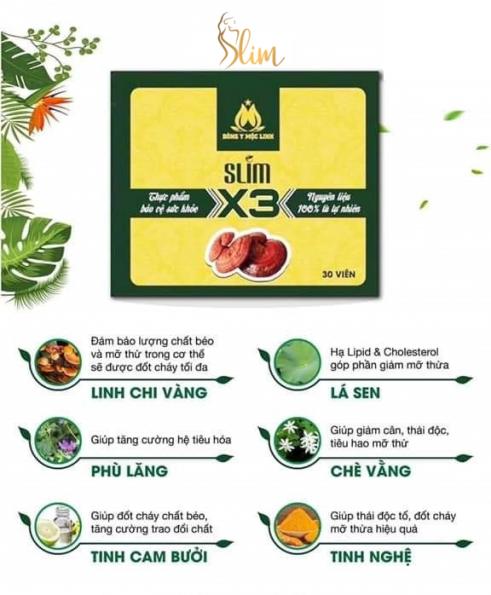 Thành phần giảm cân Slim X3