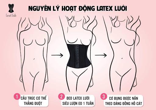 Latex Corset Chuẩn - Nguyên lý hoạt đông Latex lưới chuẩn Hy Lạp - Châu Âu
